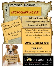 microchip-day